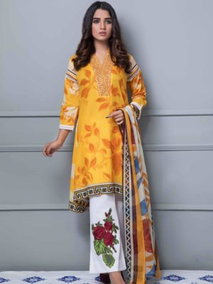 pakistani suits online (19)