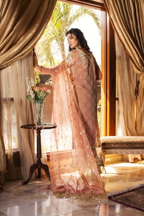 Rozina Munib's Festive Chiffon RM-3