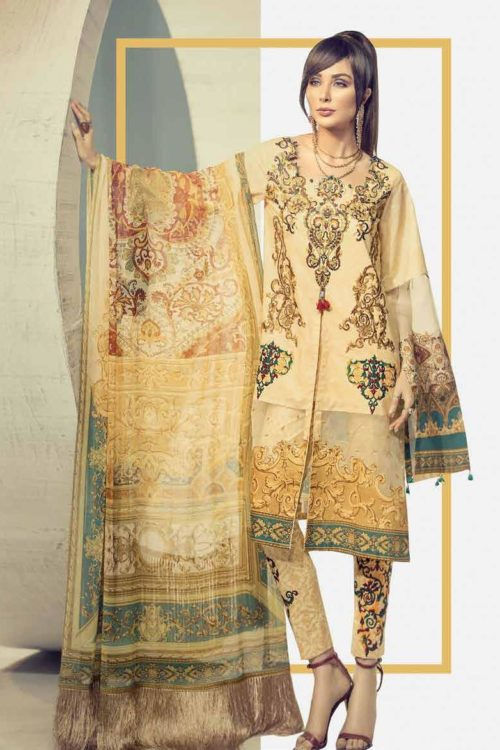 pakistani suits online (12)