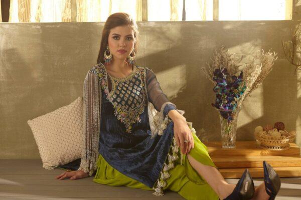 Zara Hayaat Festive Collection – BLUE BIRD 20 W6 RESTOCKED