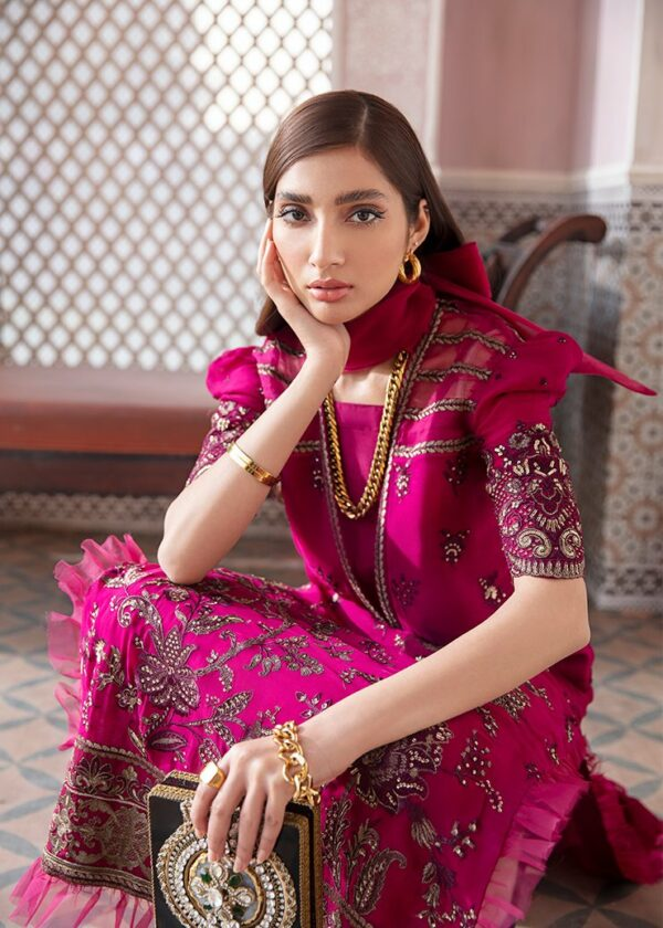 Afrozeh Nauratan Embroidered Chiffon – D-10 - Sold out